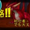 【サマナ初心者】難関!!ドラゴンダンジョン10階攻略!!無課金でも大丈夫!!【8/